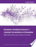 Libro de International Reserves And Foreign Currency Liquidity: Guidelines For A Data Template