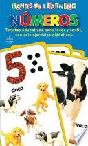Libro de Hands On Learning: Tarjetas Toca Y Siente. Numeros